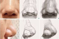 Noses drawing reference and noses drawing tutorial Drawing Heads, Nose Drawing, Painting & Drawing, Anatomy Sketches, Art Sketches, Art Drawings, Human Anatomy Drawing, Anatomy Art, Figure Drawing