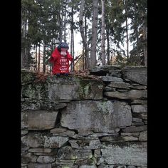 Harvey played king of the rock wall on the old barn foundation! Can you name the location? #lentoutside #skylake14