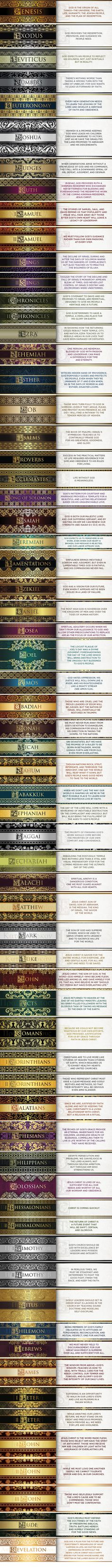 A great summary of each of the books in the bible, will certainly help guide reading