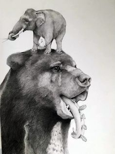 crossconnectmag: Surreal Pencil Drawings by Adonna...
