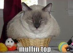 Muffin Top lmao!