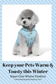 Fashion for Pets - waterproof winter coat for dogs, warm winter coats large dogs, best winter coats for dogs, best winter coats for small dogs, winter coats small dogs, winter coats big dogs, winter coats large dogs, winter shoes for dogs, winter safety for dogs, best winter shoes for dogs, winter clothes for dogs, fashion for cats, pet clothes for cats and, outfits for cats, outfits for small dogs