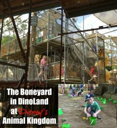 Kids Will Dig The Boneyard at Disney's Animal Kingdom - Traveling Mom