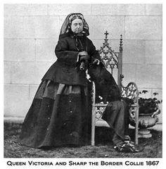 British Paintings: Queen Victoria's Border Collies