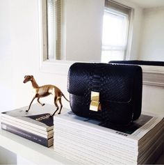 BAG ENVY on Pinterest | Celine, Leather Backpacks and Bucket Bag