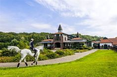 Image result for Awesome Horse Property with Barn