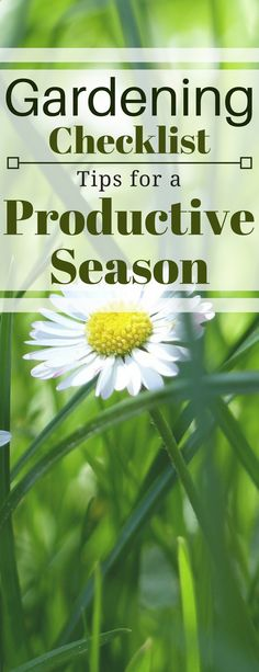 Checklist for a productive season. Learn what yo need to do to have a successful season using this simple garden checklist