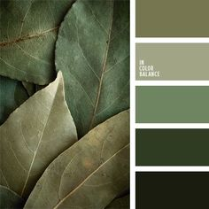 monochrome green color palette perfectly combines shades of green ranging from. - Some Colour Inspiration -A monochrome green color palette perfectly combines shades of green ranging from. - Some Colour Inspiration - Exterior Paint Colors For House, Paint Colors For Home, Exterior Colors, House Colors, Gray Exterior, Paint Colours, Ranch Exterior, Exterior Homes, Stucco Exterior