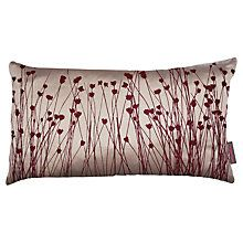Buy Clarissa Hulse Grasses Cushion, Plum Online at johnlewis.com