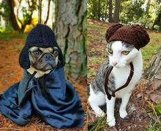 Crocheted 'Star Wars' Hats For Cats And Dogs