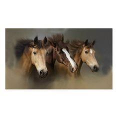Wild Horse Trio Busi