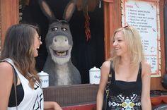 Super cute and funny Donkey from Shrek Shrek, Donkey, Super Cute, Funny, Donkeys, Funny Parenting, Hilarious, Fun, Humor