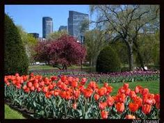 Boston Common Park, Boston, MA.