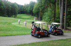 Northern Ohio daily newspaper covering local, regional, and national news including local sports, video and multimedia coverage, and classified advertising. Golf Carts, Ohio, The Neighbourhood, Golf Courses, Club, Spaces, Usa, Country, Summer