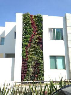 Green facade, wall exterior и outdoor walls. Vertical Green Wall, Vertical Bar, Jardin Vertical Artificial, Eco Buildings, Green Facade, Vertical Farming, Wall Exterior, Walled Garden, Modern Landscaping