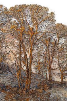 Lesley Richmond photographs trees, focusing on the intricacy of their branching structures and then prints these images on cloth, using a medium that creates a dimensional surface. She then eliminates selected background areas, leaving the structural images of trees as the dominant feature. The images are then painted with metal patinas and pigments.