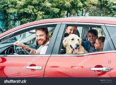 A family car is a necessity that should be good looking and well maintained. Here are four additions to make your boring family car extraordinary. Luxury Automotive, Automotive Design, Dog Stock Photo, Cars Characters, Dog Safety, Young Family, Car Travel, Dog Quotes, Dog Names