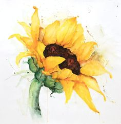 Watercolor sunflower with paint splash poster print by atelier b art Watercolor Paintings For Beginners, Art Watercolor, Watercolor Sunflower, Sunflower Art, Watercolor Illustration, Watercolor Flowers, Sunflower Paintings, Paintings Of Sunflowers, Splash Watercolor