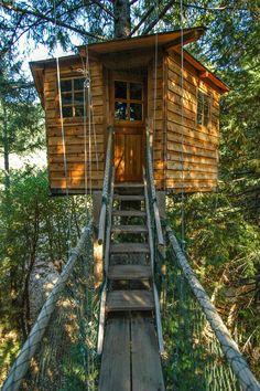 Casa sugli alberi per bambini n.25