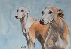 , €20.00  Zoe says she wants to be the greyhounds friend...