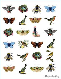 These delightful images are good for spring crafts such as place card settings at Easter dinner, glued onto love letters mailed to a sweetie, invitations to showers, scrapbook decorations, and on and on...