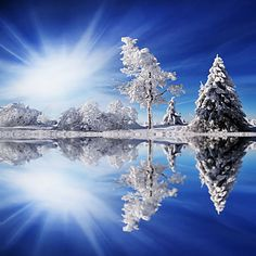 Stretched Canvas Art Landscape Cold Light by Philippe Sainte-Laudy Ready to Hang – USD $ 29.99