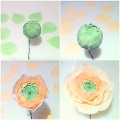 ✿ Sugar Peony, Ranunculus and Rose ✿