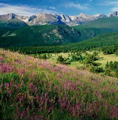 Some people like the ocean, but to me, this is a beautiful vacation spot! :D This is Estes Park in Colorado!