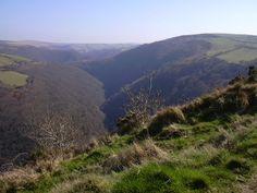Mrytleberry Cleave, Exmoor, North Devon