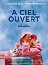 'A ciel ouvert' by Mariana Otero // A documentary about an institution for children (Le Courtil) with severe psychosocial problems on the Belgian-French border. // & of August Cinema Video, French Movies, Film Streaming Vf, Movies 2014, Movies Worth Watching, Cinema Movies, Poster Colour, Dvd Blu Ray, Mariana