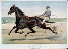 Jay Eye See -- on of the great trotters. Standardbred Racing, Horse Racing, Race Horses, Harness Racing, Thoroughbred, Horse Art, Equestrian, Photo Art, Pony