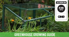Tui Garden | Greenhouse Growing Guide