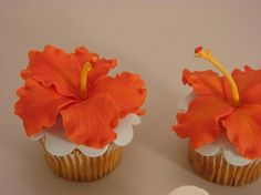 Test cupcakes, before making the actual Hawaiian cake. Hibiscus made out of fondant and handpainted Hawaiian Theme Cakes, Hawaiian Cupcakes, Tropical Cupcakes, Hawaiian Luau Party, Cupcake Cake Designs, Cupcake Cakes, Festa Moana Baby, Cupcake Diaries, Luau Birthday