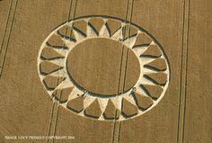 Crop Circle at  Cley Hill, Nr Warminster, Wiltshire. Reported 30th July.2016