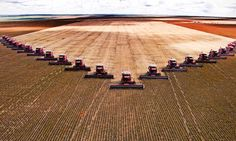 Just as in manufacturing, sensors, wireless networks and control technology make it easy to harvest yield data. This means that, like manufacturers, farmers are looking to dig more value out of the field to feed Big Data and also the world.