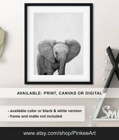 Elephant nursery print, Black and white animal prints, Elephant baby nursery art, Elephant Baby animal art, Safari nursery Print/Canvas/Digital