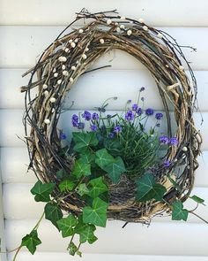 Moss Wreath, Grapevine Wreath, Easter Wreaths, Holiday Wreaths, Beautiful Flower Arrangements, Beautiful Flowers, Pastel Room, Deco Table, Nature Crafts