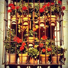 Balcony in #Pedraza #TravelShoes