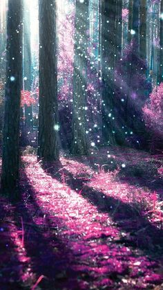 azutura Enchanted Forest Wall Mural Purple Tree Photo Wallpaper Girls Bedroom Home Decor available in 8 Sizes Gigantic Digital Tree Wallpaper Iphone, Pretty Phone Wallpaper, Free Phone Wallpaper, Galaxy Wallpaper, Photo Wallpaper, Wallpaper Backgrounds, Mobile Wallpaper Android, Forest Wallpaper, Screen Wallpaper