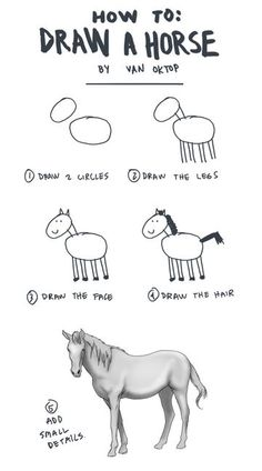 a guide to drawing horses