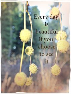 Every day is beautiful if you choose to see it