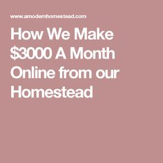 How We Make $3000 A Month Online from our Homestead