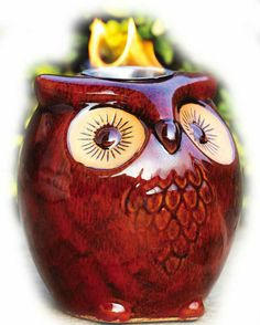 OWLS A HOOT Fireside Firepot by EvergreenDimensions are about 7.5 inches diameter x 8 inches tall.Each EVERGREEN FIRE POT is an individually handmade unique work of art.   FIRESIDE  FIREPOTS make marvelous home decor accents for decks, patios, lawns, walkways and much more.  Enjoy the ambiance of dancing flames.Citronella Fuel is only for outdoor use. For indoor or outdoor use.Comes packaged securely in a cardboard box.All sizes and brands of firepots can use PATIOLITE 32 oz BOTTLES of…