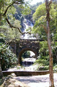 Floresta da Tijuca (com vista para a ponte Job de Alcântara) - Rio de Janeiro.