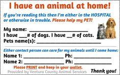 Emergency Animal card