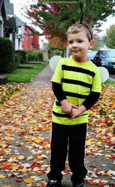 Creative Green Living: Bumble Bee Costume Tutorial {Inexpensive & No-Sew} Cheap Halloween Costumes, Easy Costumes, Dress Up Costumes, Adult Costumes, Costume Ideas, Costumes Kids, Bug Costume, Diy Bee Costume, Dollar Store Halloween