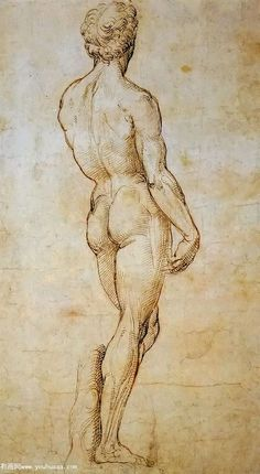 Michelangelo's David, back-a back view of michelangelos david Human Figure Drawing, Figure Sketching, Sketch Painting, Drawing Sketches, Cartoon Drawings, Art Drawings, Academic Drawing, Anatomy Art, Renaissance Art