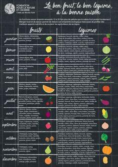 Le calendrier des fruits et légumes de saison
