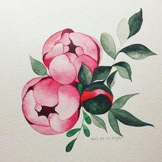 Peony Painting, Fabric Painting, Watercolor Paintings, Plant Illustration, Botanical Illustration, Botanical Art, Watercolor Sketch, Watercolor Cards, Watercolor Flowers