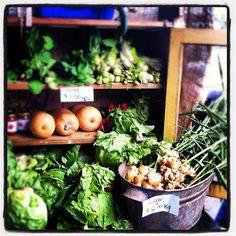 <3 Noosa Farmers Markets www.noosaviplimousines.com